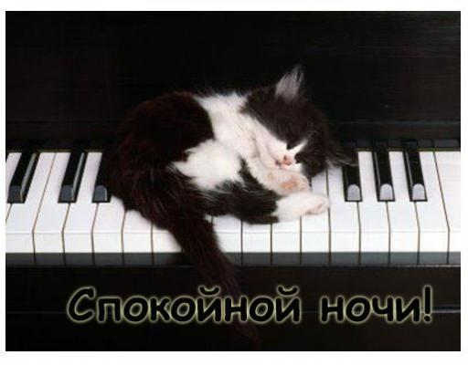 sleeping_cat_on_piano.jpg