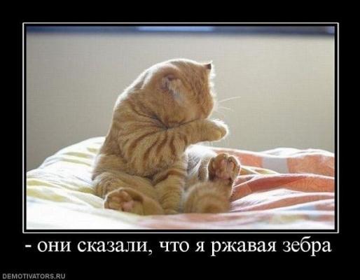 post-31-1330333892_thumb.jpg