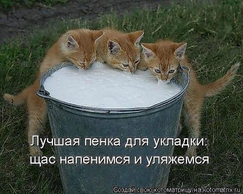 post-72179-1331635060_thumb.jpg