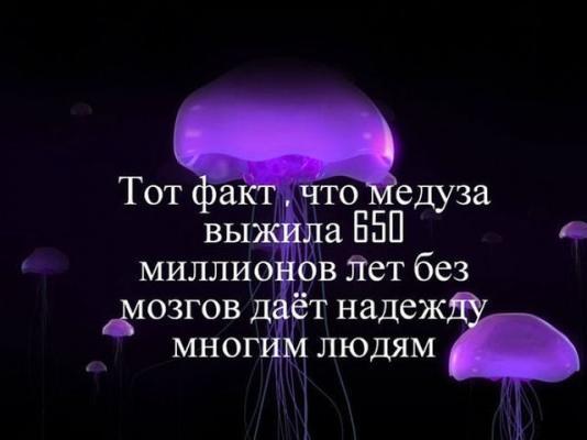 post-49591-1398716182_thumb.jpg