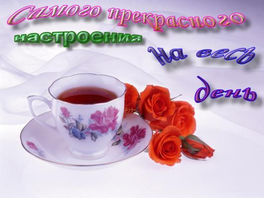 1254464519__239.jpg