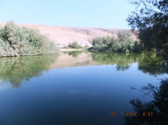DSCF2003-1.jpg