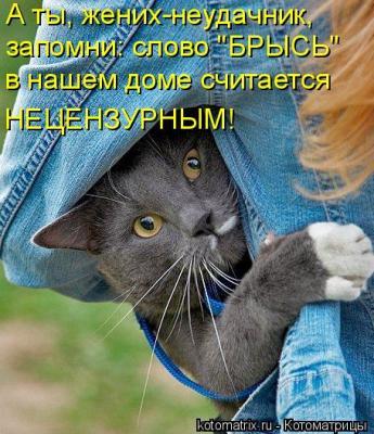 post-31-1322687541_thumb.jpg