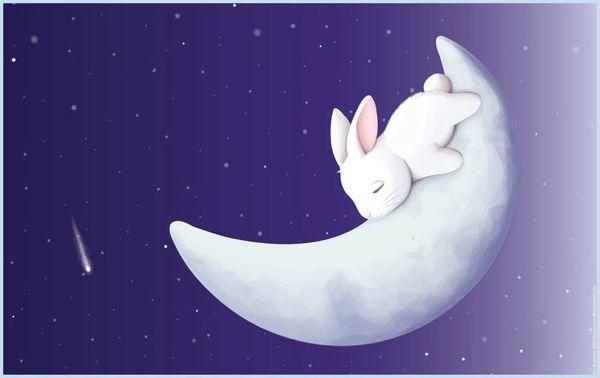 rabbit_1.jpg