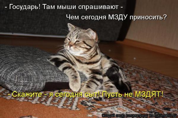 post-72179-1322826646_thumb.jpg