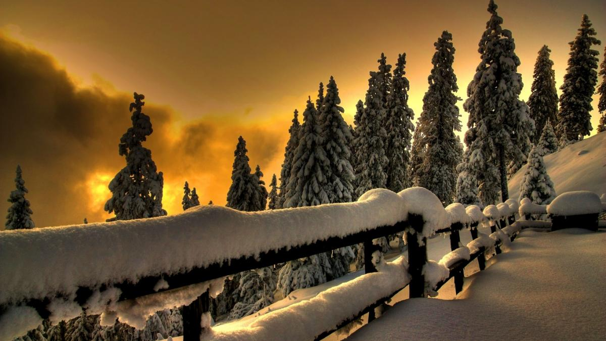 http://zamok.druzya.org/uploads/monthly_12_2015/post-239740-0-31211300-1450616976.jpg