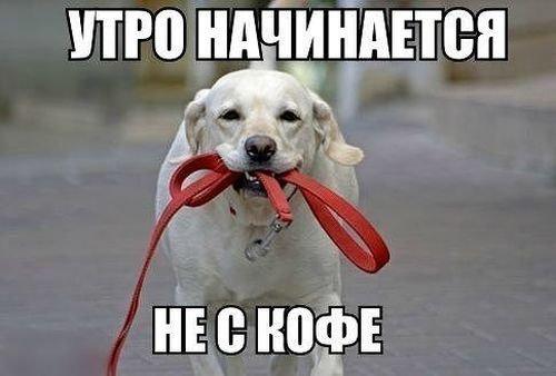 201403130044-utro-nachinaetsya-ne-s-kofe-kashamalasha-com.jpg