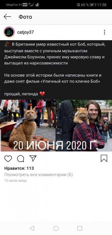 Screenshot_20200622_115859_com.instagram.android.jpg